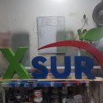 X Sur
